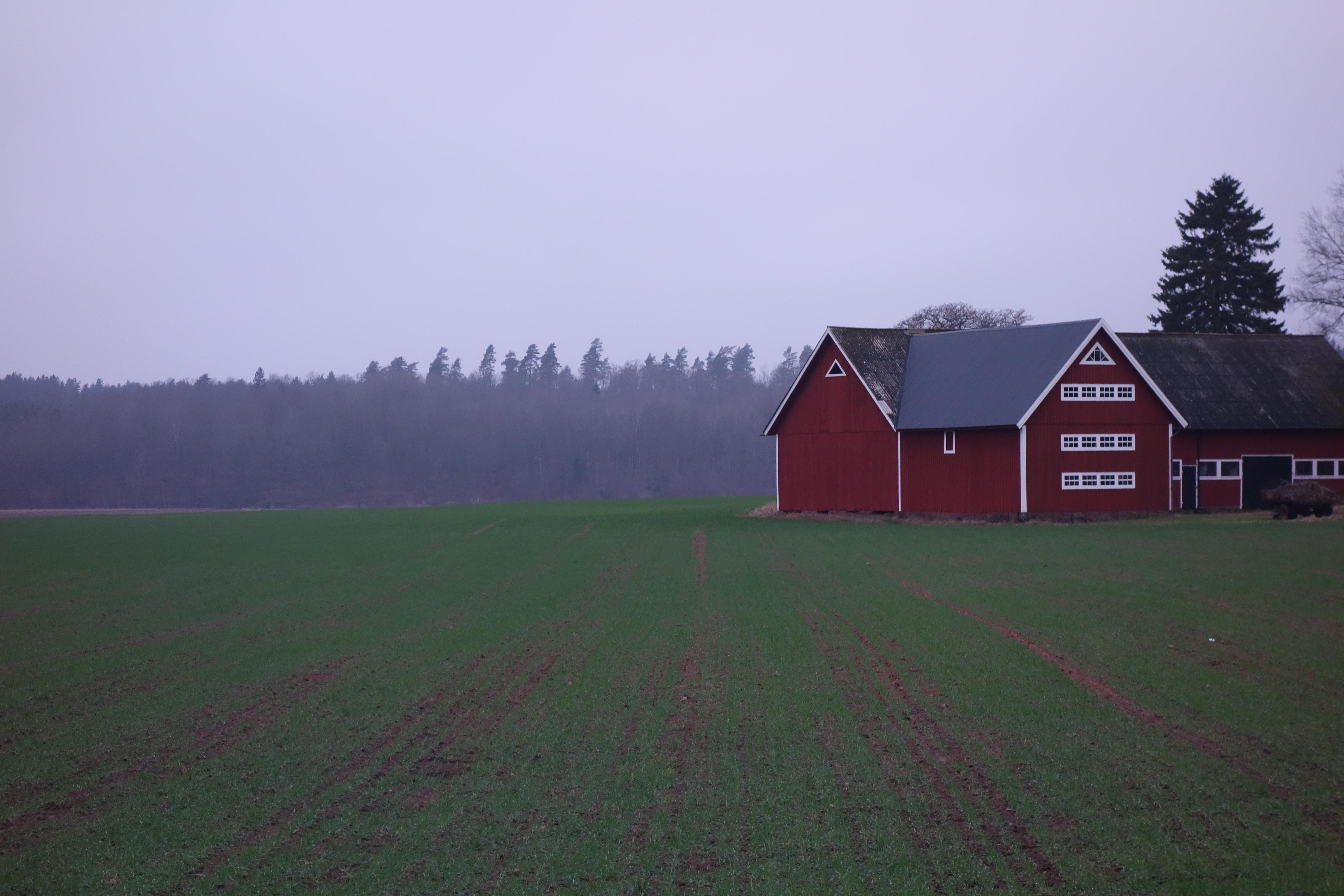 Dejtingsajter för bönder jägare